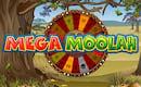 Multilotto Spieler aus der Schweiz räumt bei Mega Moolah €23.540 ab