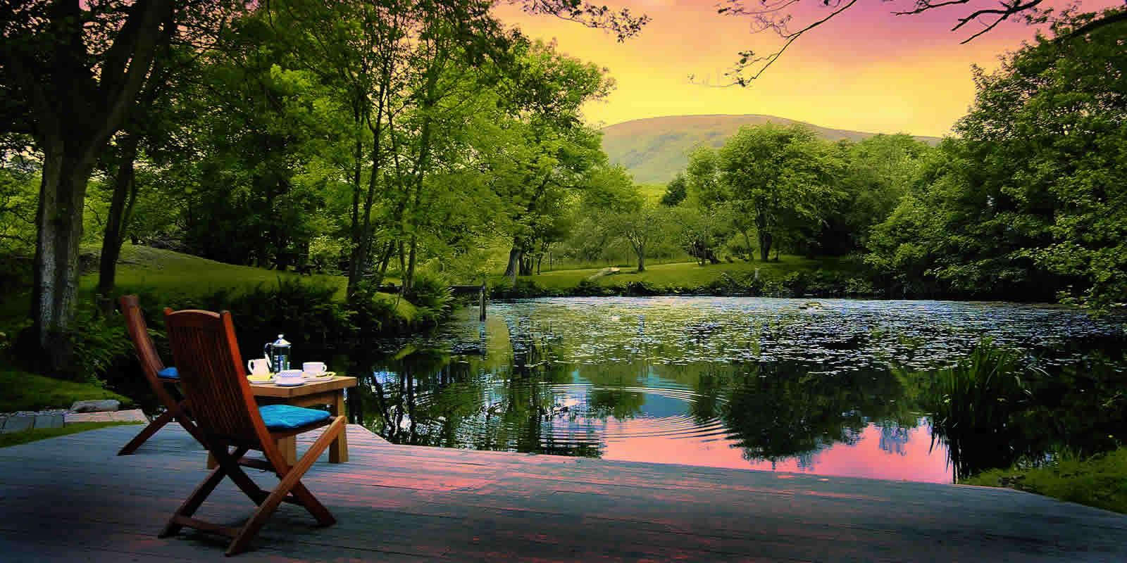 forest luxury